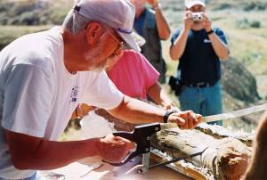 A dinosaur femur being sawed by Glendive Dinosaur & Fossil Museum director Otis Kline of Glendive, Montana
